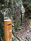 Takaosan06