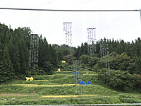 Niigata4