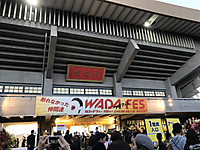 Wadafes01