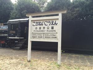 Koganei_park01_2